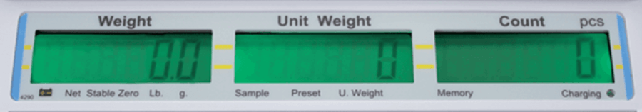 Counting Scale LED Display
